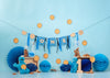 1st cake smash backdrop Sesame Street background-cheap vinyl backdrop fabric background photography