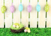 Rice white fence and color eggs backdrop for Easter