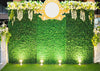 Party wedding photography backdrop green leaves with flower-cheap vinyl backdrop fabric background photography