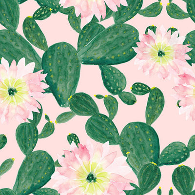 Watercolor painting pattern backdrop with cactus flowers