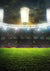 Soccer field photography backdrop sports background
