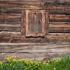 Wooden window wood wall Easter green backdrop-cheap vinyl backdrop fabric background photography