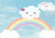 Baby birthday photo backdrop rainbow and clouds
