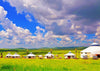 Prairie photography backdrop ranch and yurt-cheap vinyl backdrop fabric background photography