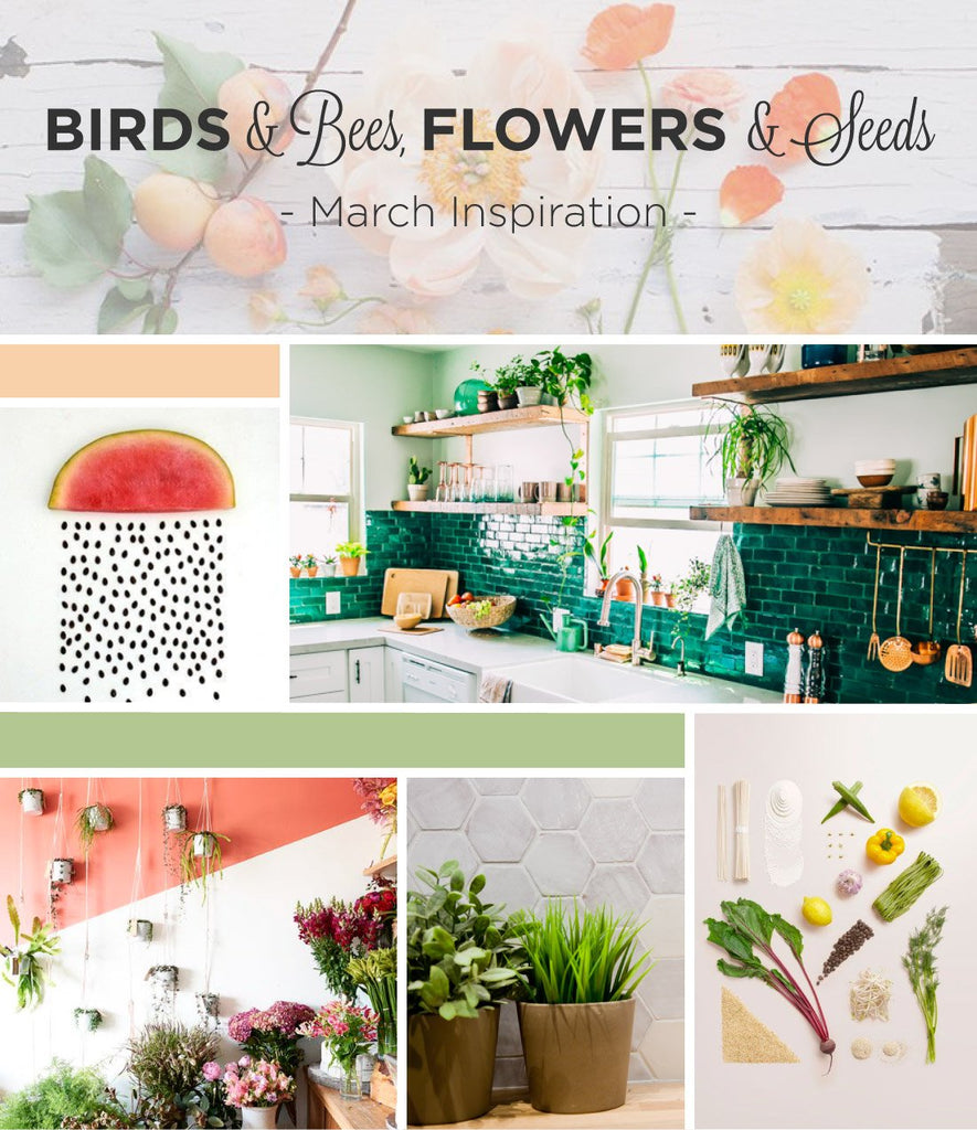 Birds & Bees, Flowers & Seeds