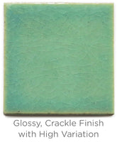 Color Chip 1065 Mint Julep