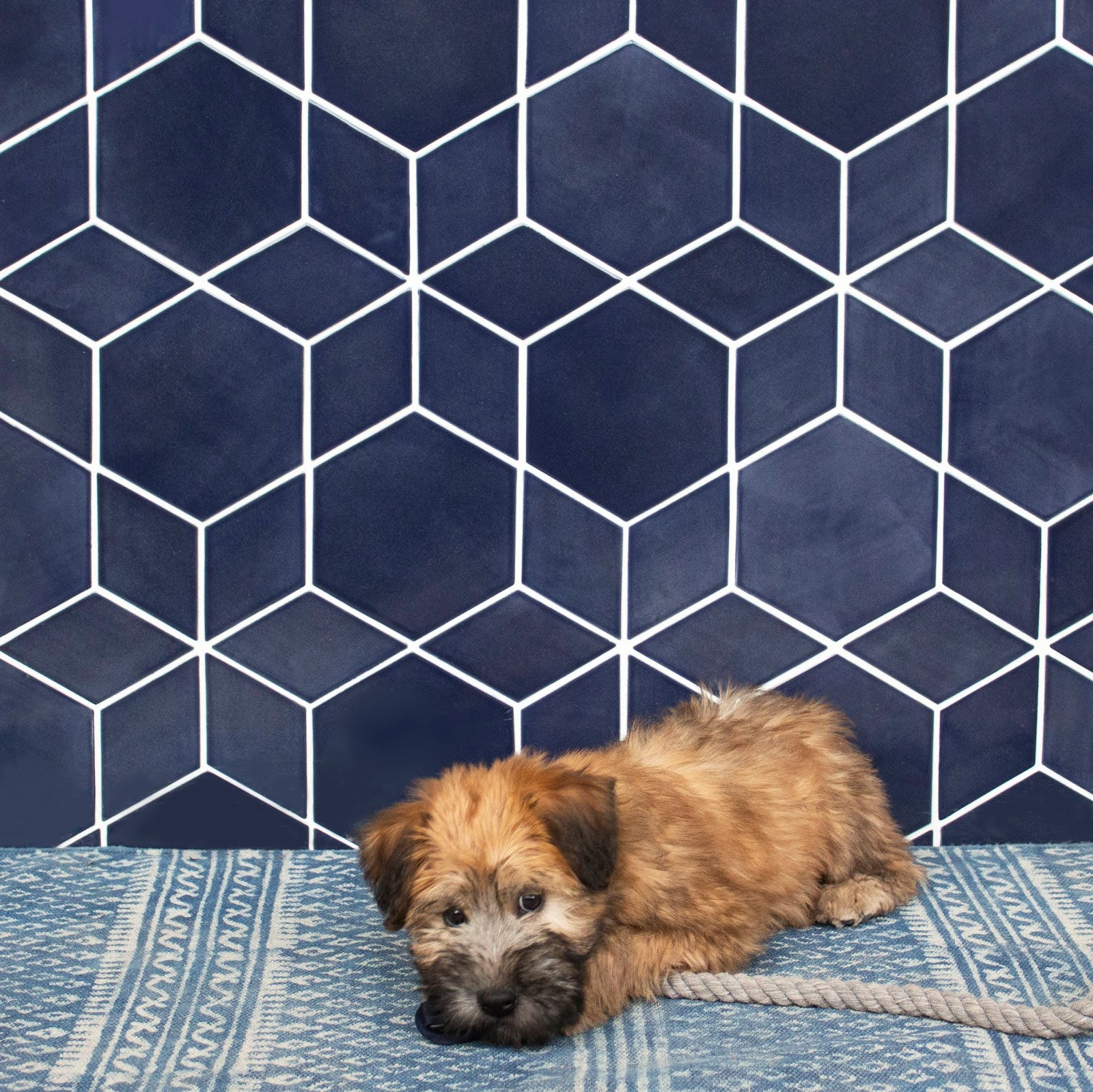 Mixed Geometric Tile Backsplash Navy