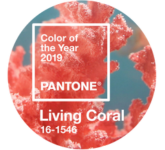 Living Coral Pantone 2019 Color of the Year
