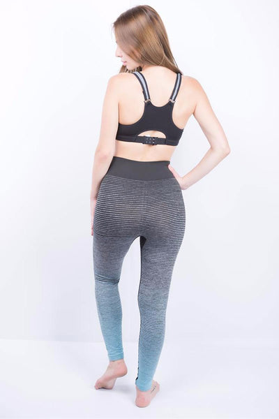 Ombre Training Tights