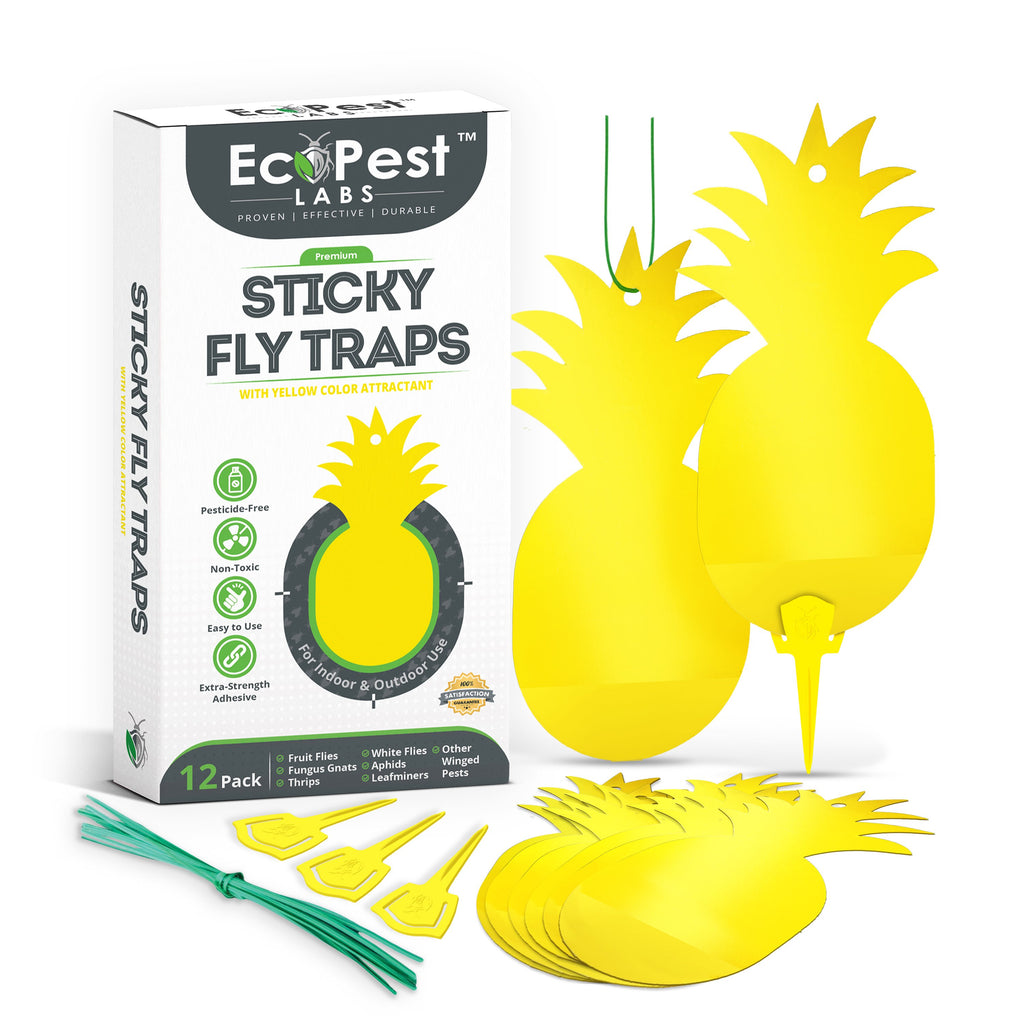Sticky Fly Traps (Yellow) — 12 Pack by EcoPest Labs
