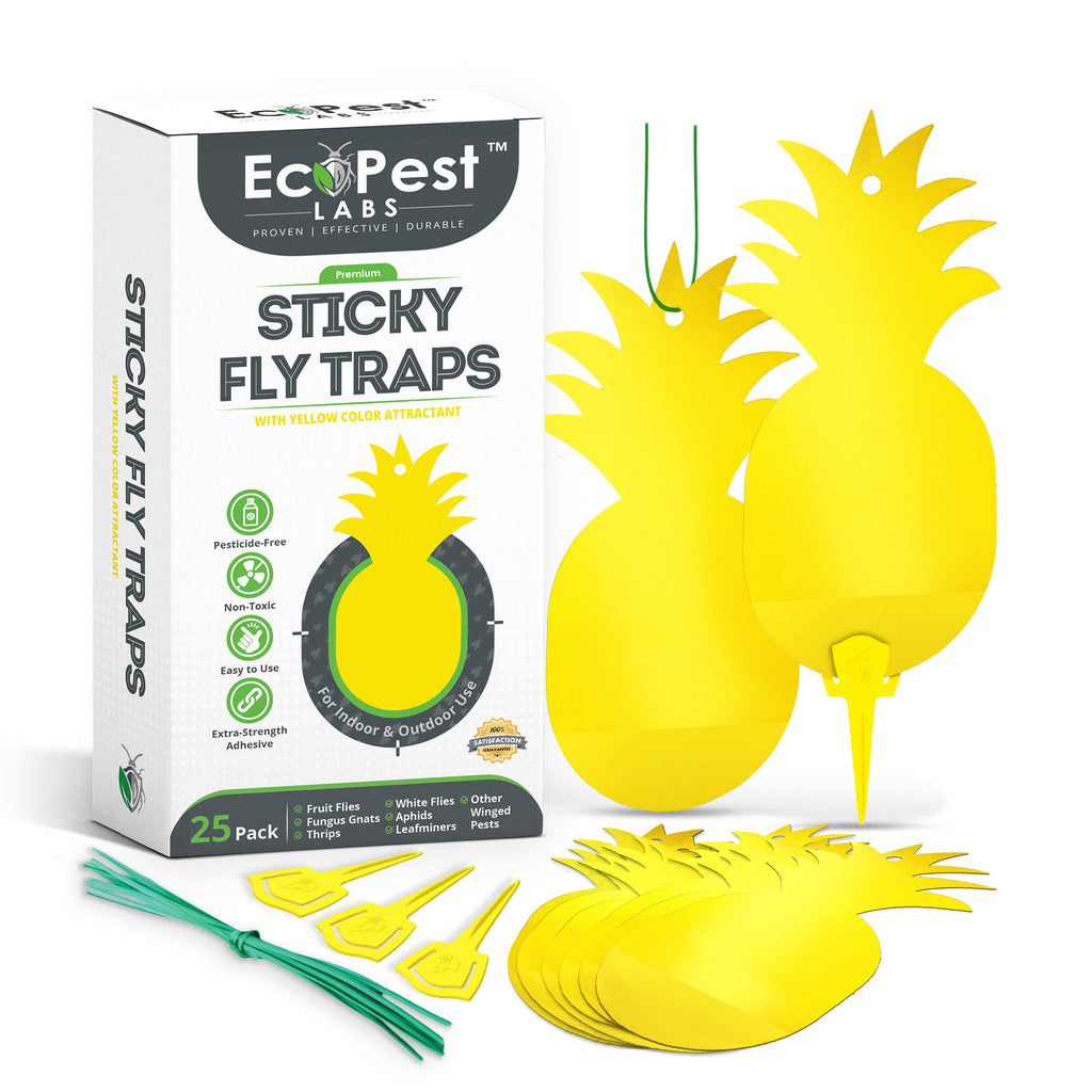 Sticky Fly Traps (Yellow) — 25 Pack by EcoPest Labs