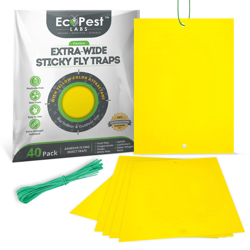 Extra-Wide Sticky Fly Traps (Yellow) — 40 Pack by EcoPest Labs