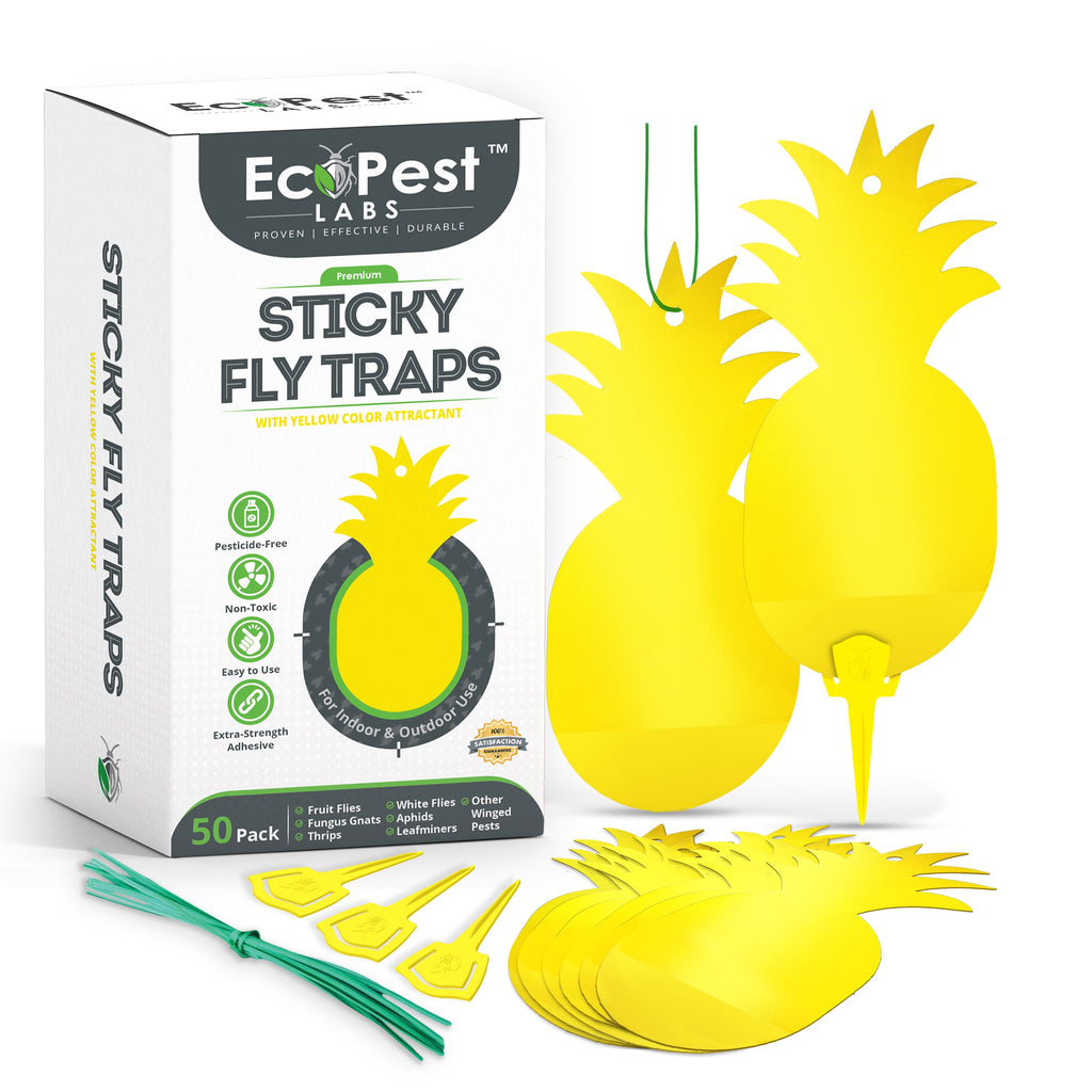 Sticky Fly Traps (Yellow) — 50 Pack by EcoPest Labs