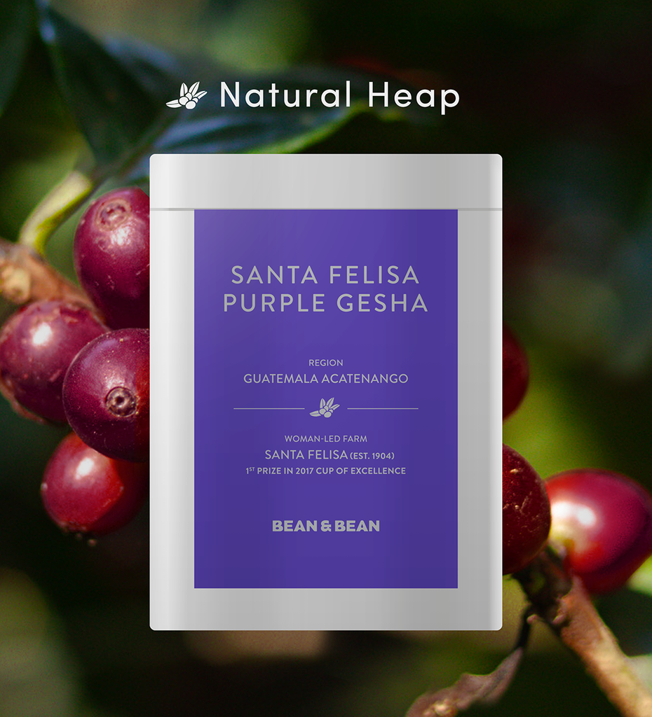 Santa Felisa Gesha Natural Heap by Bean & Bean Coffee Roasters