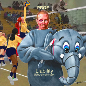 "PROF ""Liability"" CD"