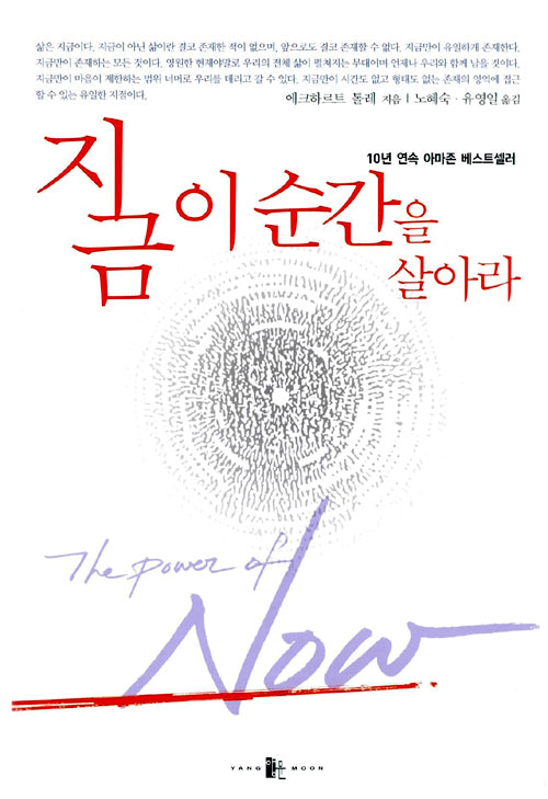 The Power of Now (Korean Edition)