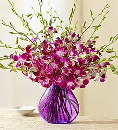 Exotic Breeze Orchid Bouquet