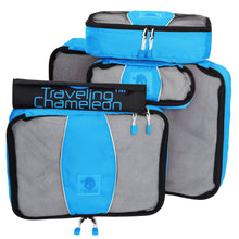 Traveling Chameleon - Blue