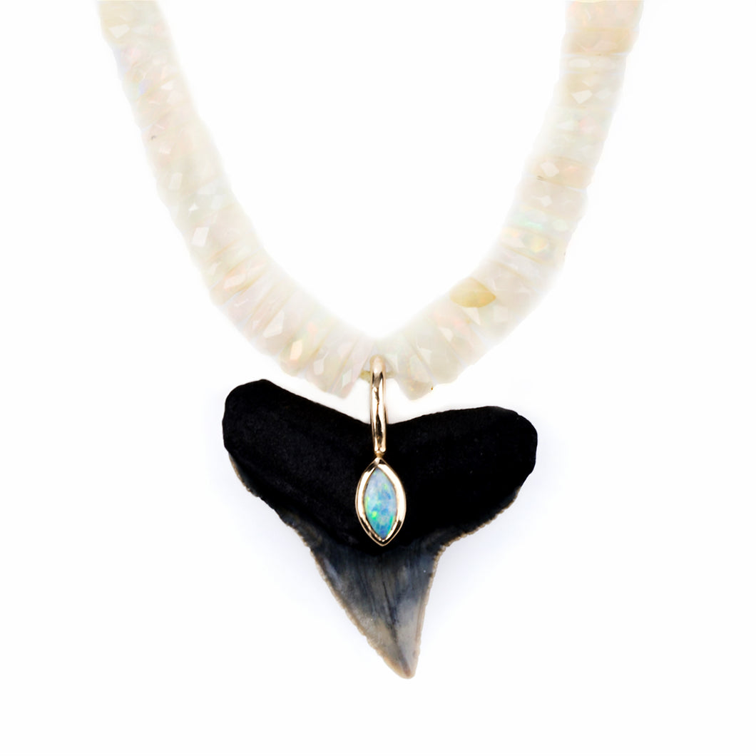 The Shark Paia Surf Necklace 001