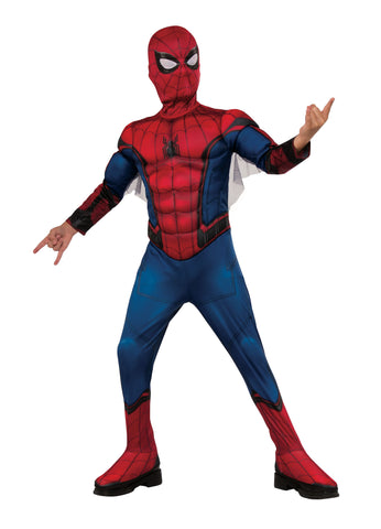 Adult Amazing Spider-Man Costume
