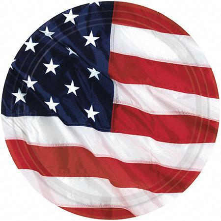 Amscan Patriotic Flying Colors American Flag Dinner Plates 8ct