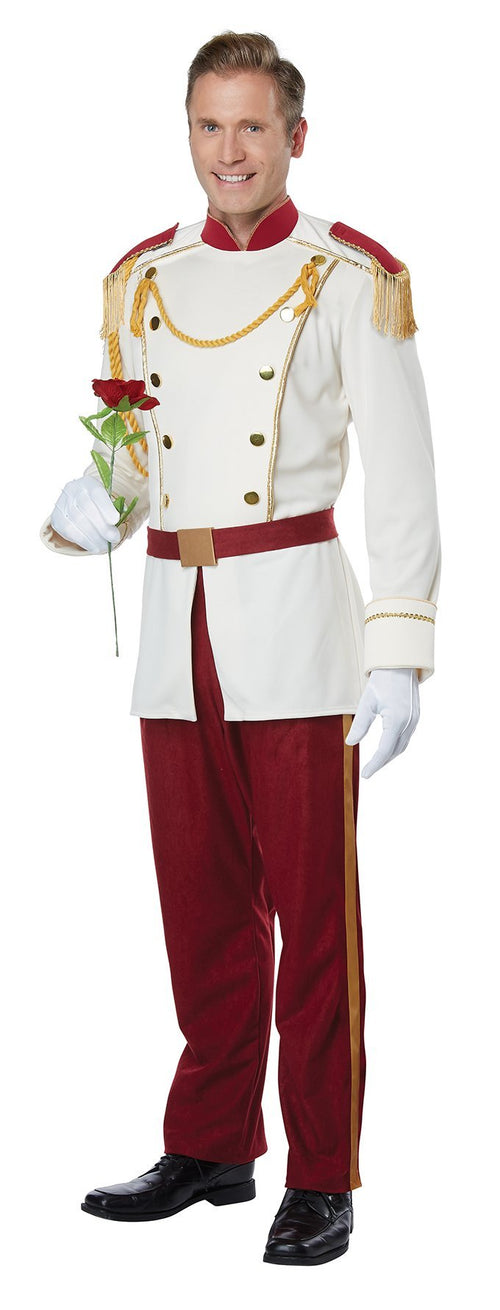 California Costumes Costumes LARGE Adult Royal Storybook Prince Costume