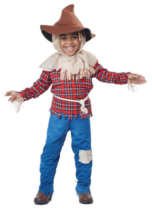California Costumes Costumes Toddler Boys Harvest Time Scarecrow Costume