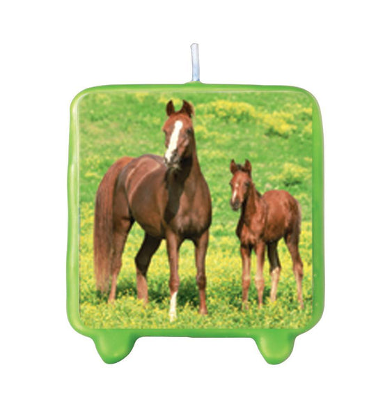 Western Theme Party Supplies Decorations Costumes and