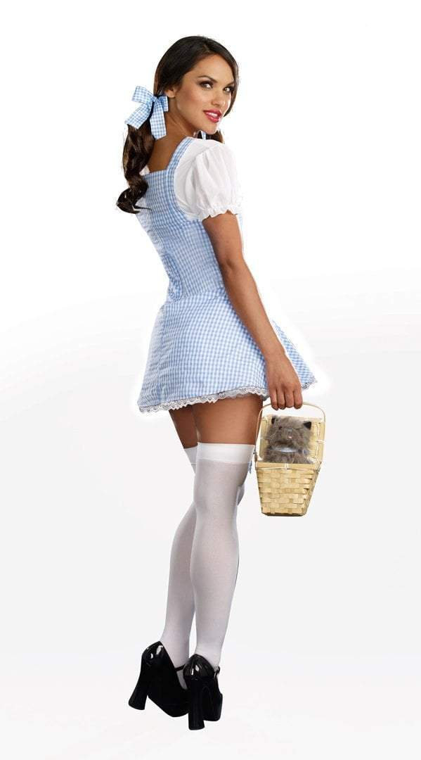 Dreamgirl Costumes Adult Blue Gingham Dress Costume