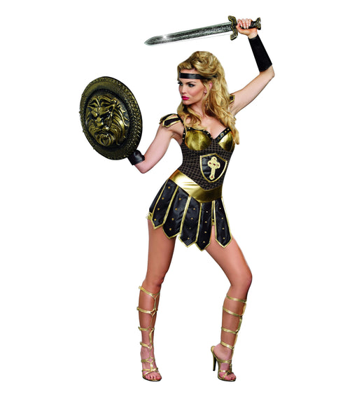 Dreamgirl Costumes Adult Queen Of Swords Costume
