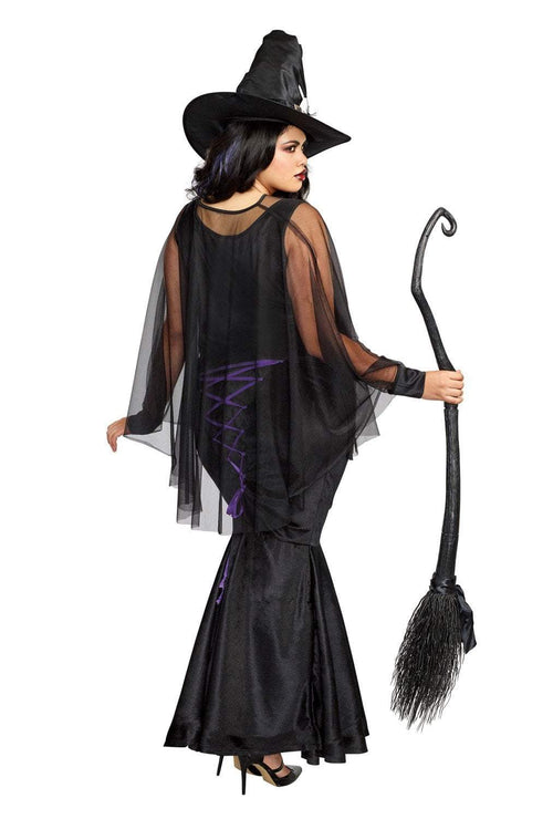 Dreamgirl Costumes Dreamgirl Women's Plus-Size Bewitching Beauty Velvet Witch Costume Gown