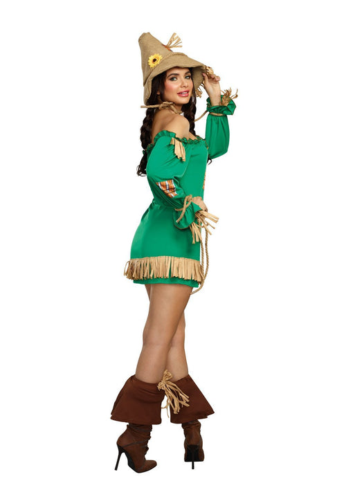 Dreamgirl Costumes Dreamgirl Women's Storybook Scarecrow Costume Dress