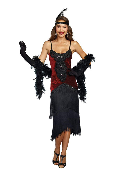 Dreamgirl Costumes LARGE Dreamgirl Women's Luxe Million Dollar Baby Flapper Costume Dress