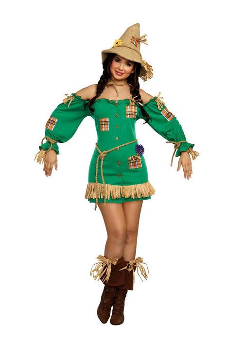 Dreamgirl Costumes LARGE Dreamgirl Women's Storybook Scarecrow Costume Dress