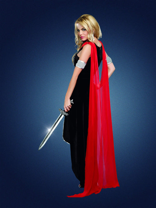 Dreamgirl Costumes Scandalous Sword Warrior Costume
