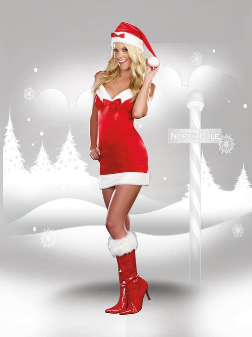 Dreamgirl Costumes Under the Mistletoe Costume