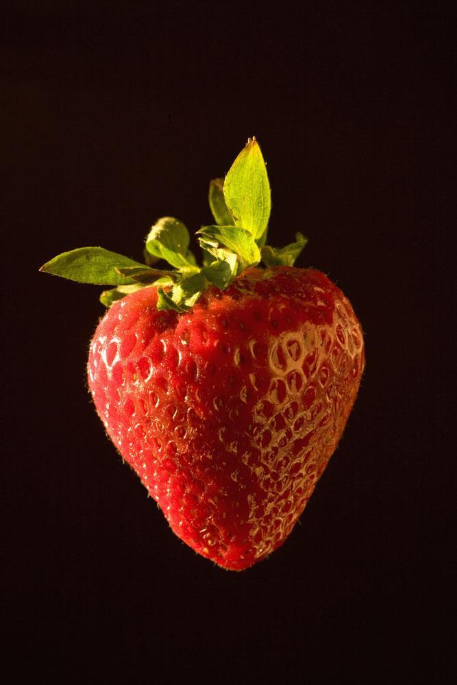 Strawberry Food & Drink Wall Mural