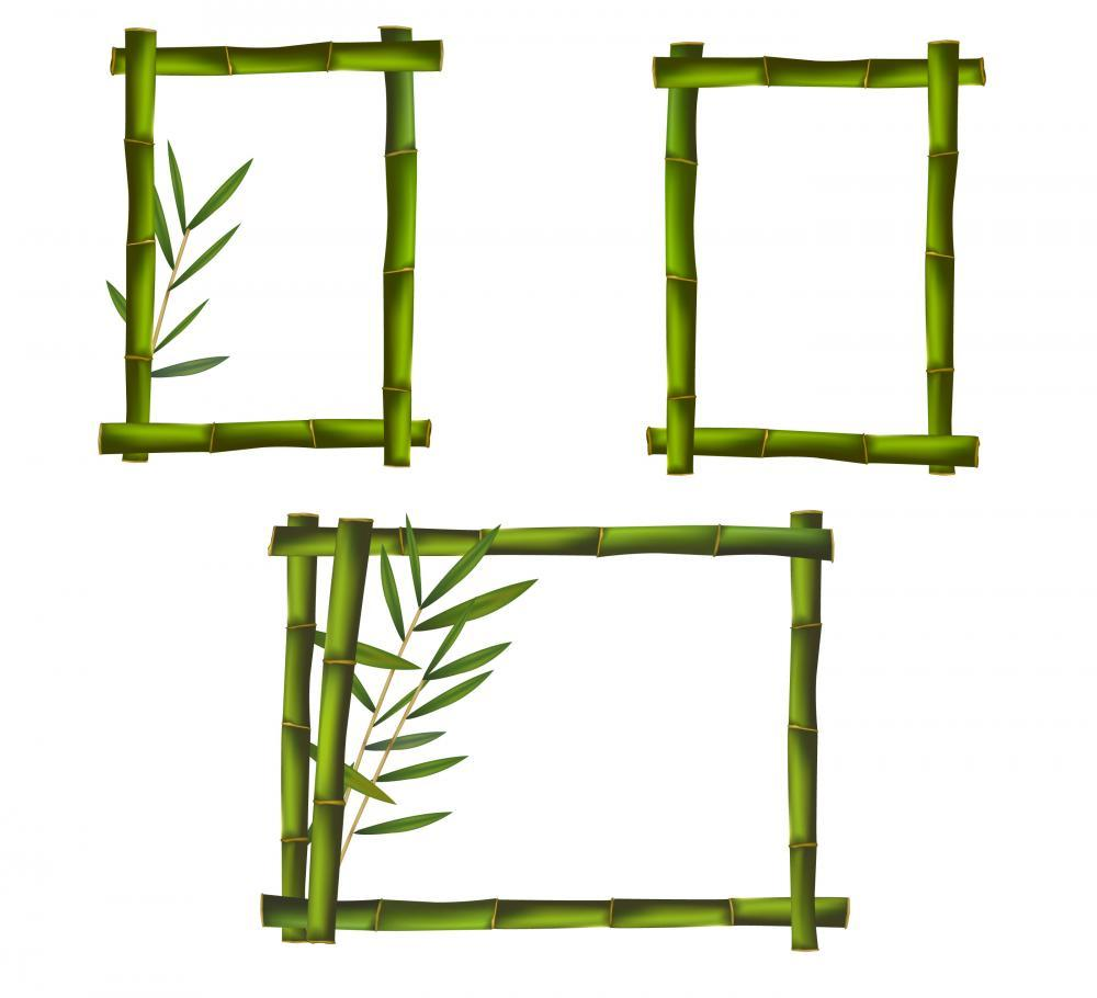 Green Bamboo Frames Made Object Wall Mural Sticker