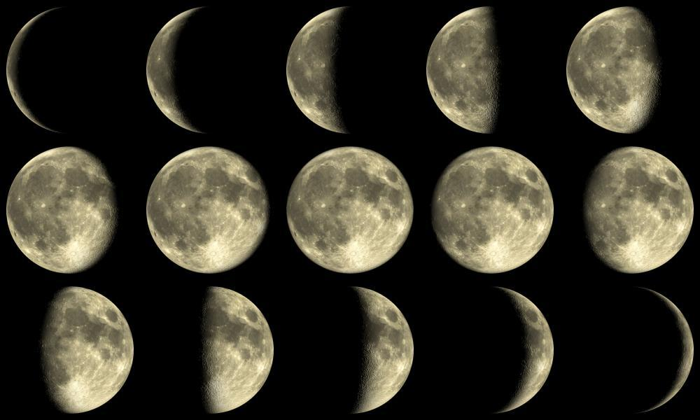 Moon Phases Space Wall Mural