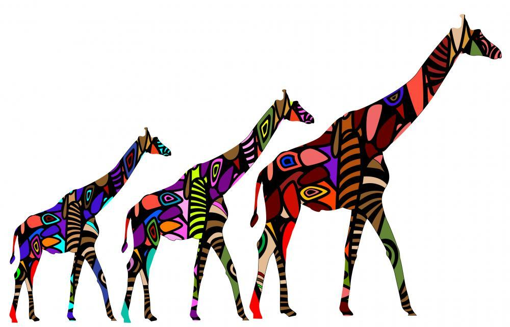 African Giraffes Animal Wall Mural - Animal-Wall-Stickers - Decall.ca