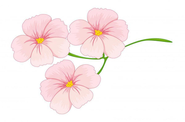 Flowers Flower Wall Mural Sticker
