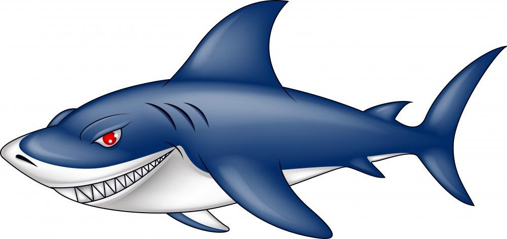Angry Blue Shark Animal Wall Mural - Animal-Wall-Stickers - Decall.ca