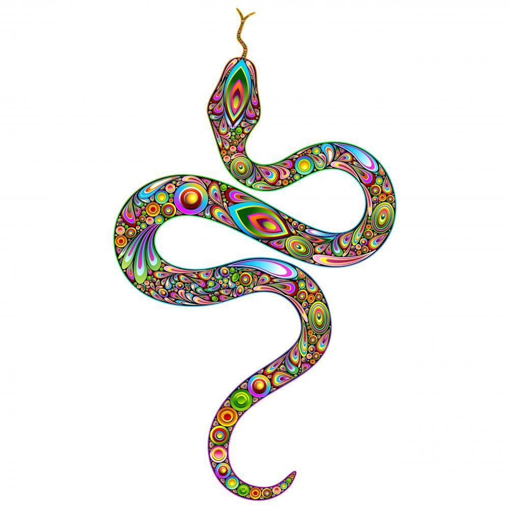 Beautiful Psychedelic Snake Animal Wall Mural - Animal-Wall-Stickers - Decall.ca
