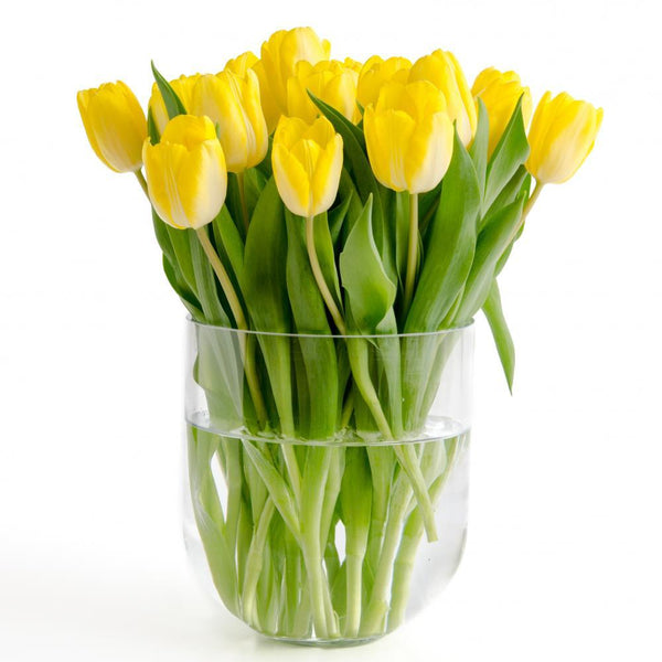 Yellow Tulips Vase Object Wall Mural Sticker