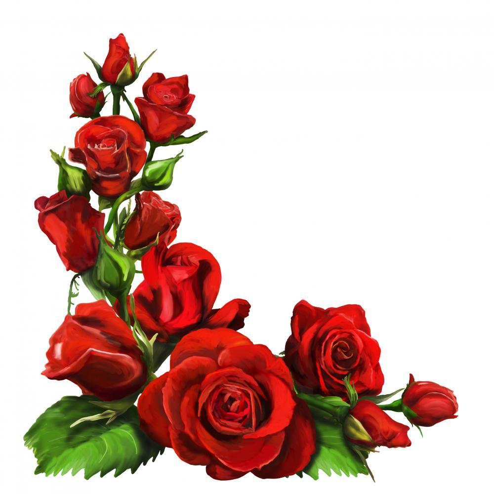 Red Roses Flower Wall Mural Sticker