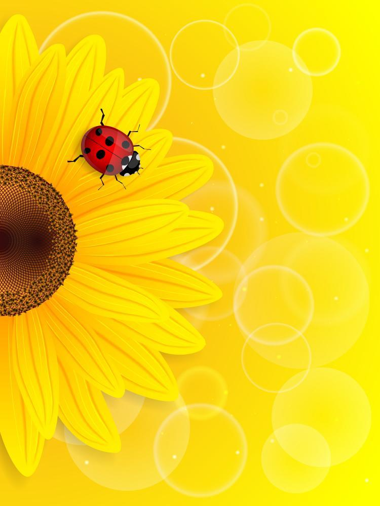 Sunflower and Ladybird Yellow Flower Wall Mural