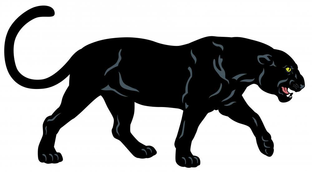 Black Panther Animal Wall Mural - Animal-Wall-Stickers - Decall.ca