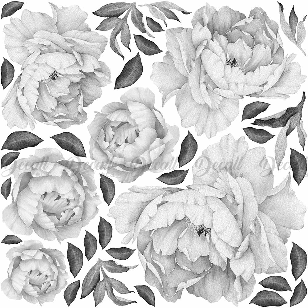 Black white peony flowers wall sticker vintage watercolor peel and stick reusable wall