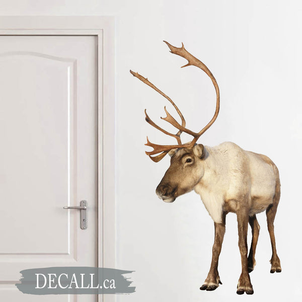 Caribou Reindeer Christmas Holiday Wall Sticker DWS1211
