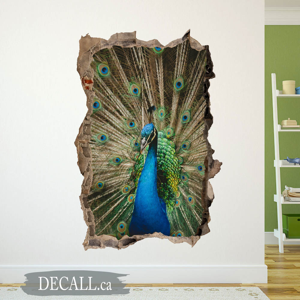 Peacock Opening Feathers Animal Wall Sticker - 3D Broken Wall Decal - DWS1213